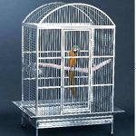 large stainless steel bird cage