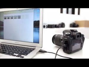 How to Connect a Camera to a Computer
