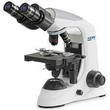 How Do Microscopes Work?